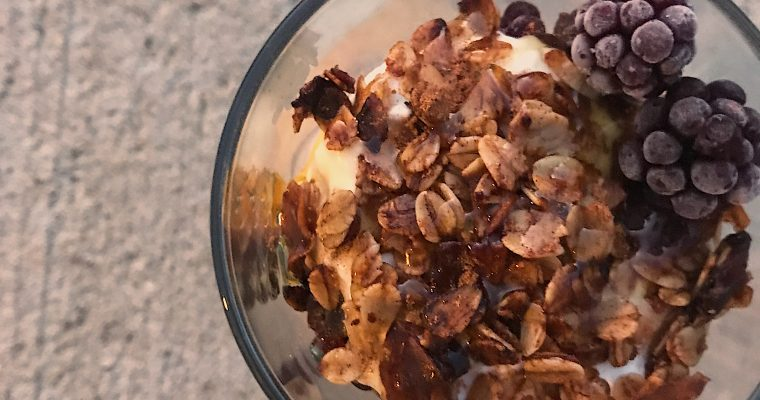 Toasted Coconut & Cranberry Granola