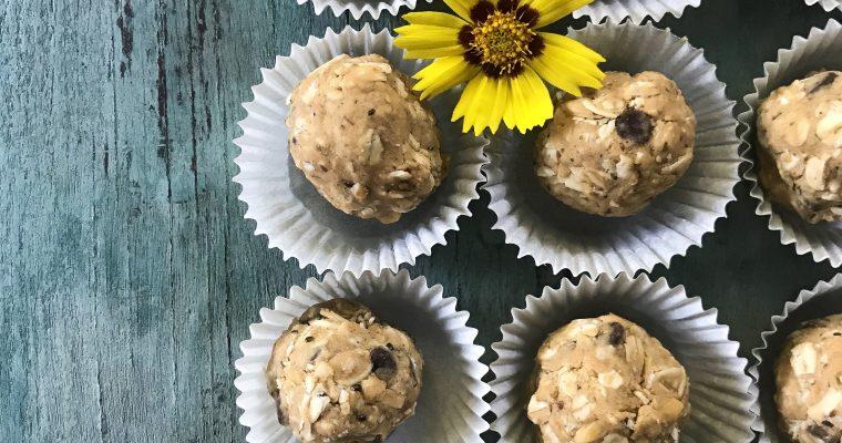 Peanut Butter + Oat No-Bake Energy Bites